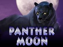 Panther Moon - игровой автомат
